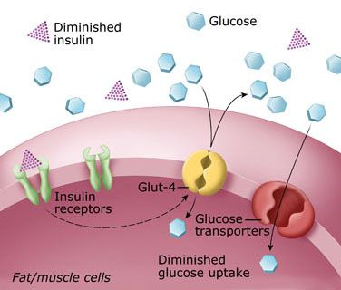 http://www.immuninfo.ru/wp-content/uploads/autoimmunnye-zabolevaniya/saharnii-diabet.jpg